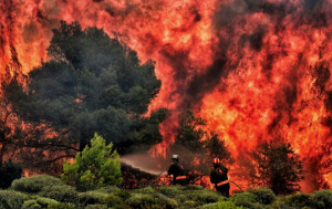 Nel 2018 incendi in calo del 90 percento