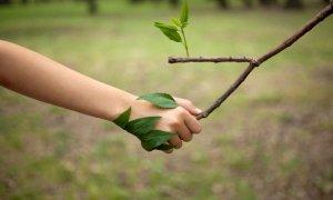 Earth Day 2021: cos'è e perché si celebra
