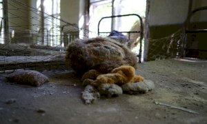 Chernobyl, i primi 35 anni dal più grave disastro nucleare della storia dell'uomo
