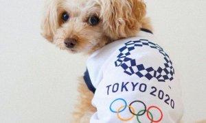 Tokyo 2020, la cerimonia d'apertura delle Olimpiadi: dove vederla in tv