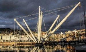 Genova: ingegnere ritira 2 litri di droga dello stupro e viene arrestato mentre stava per imbarcarsi